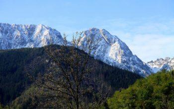 Szaleństwo w górach nie tylko zimą