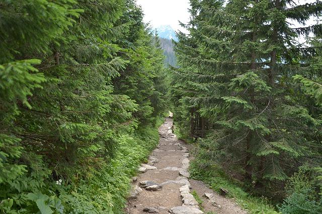 Jaki nocleg powinniśmy sobie znaleźć planując pobyt w górach?