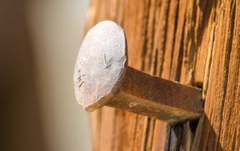 Dlaczego dobre murfory wesprą stawiane przez nas mury?